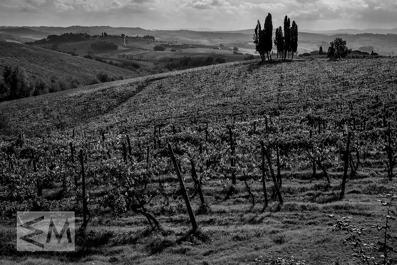 Photography Tuscany